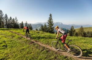 Traumhafter Sommertag zum Mountainbiken imBrixental